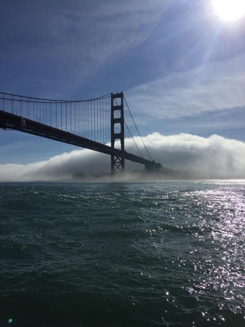 gg br with fog